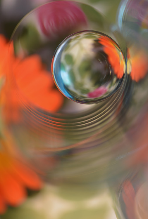 Art Print on Demand Floral sphere