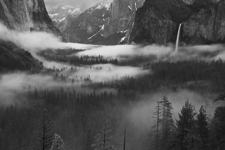 Art Print on Demand Fog Floating In Yosemite Valley