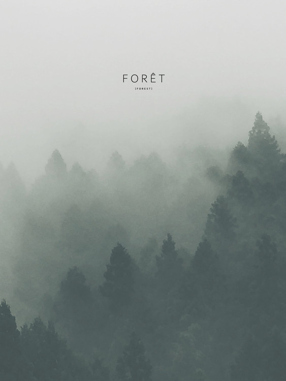 Art Print on Demand foret2