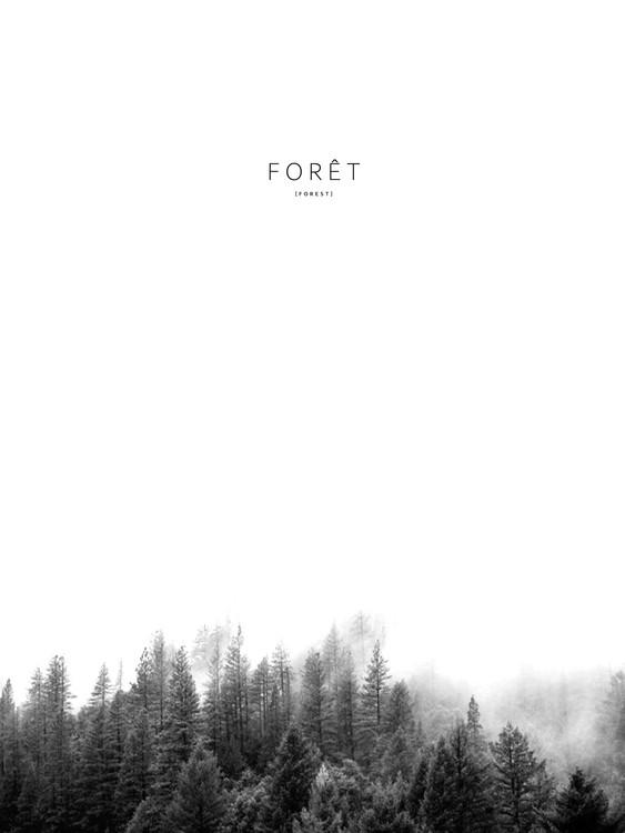Art Print on Demand foret3