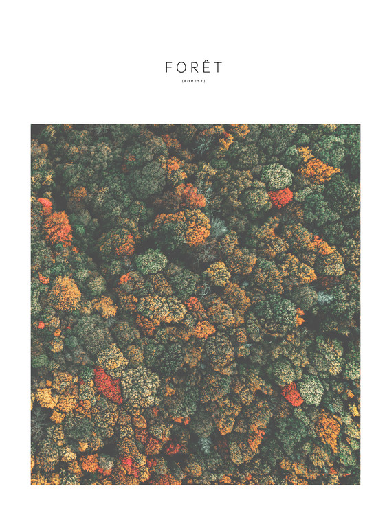 Art Print on Demand foret4