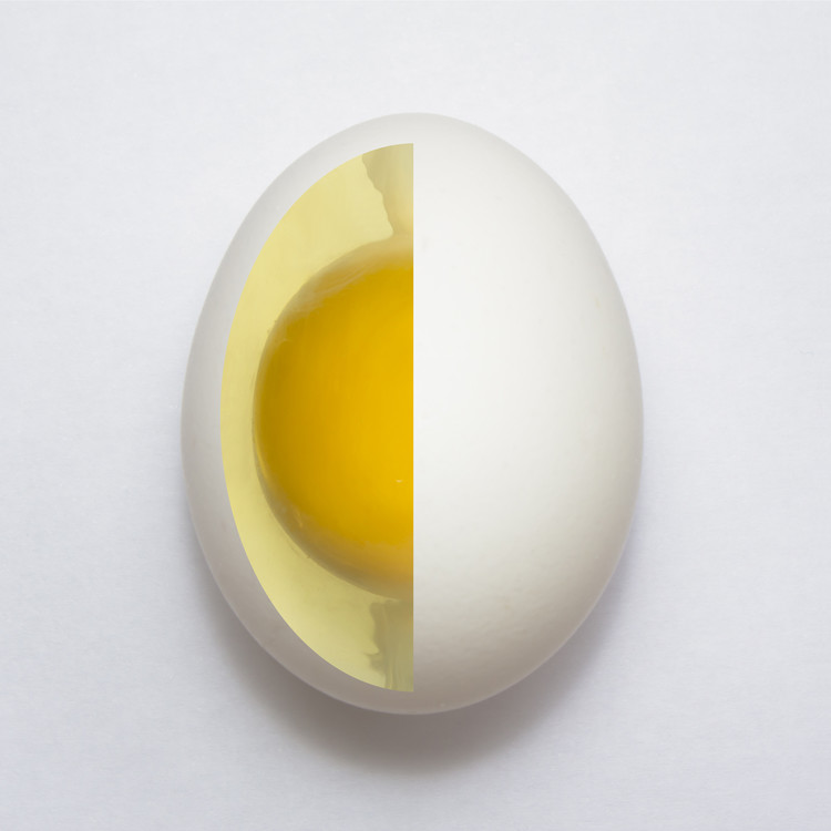 Art Print on Demand Inner Egg