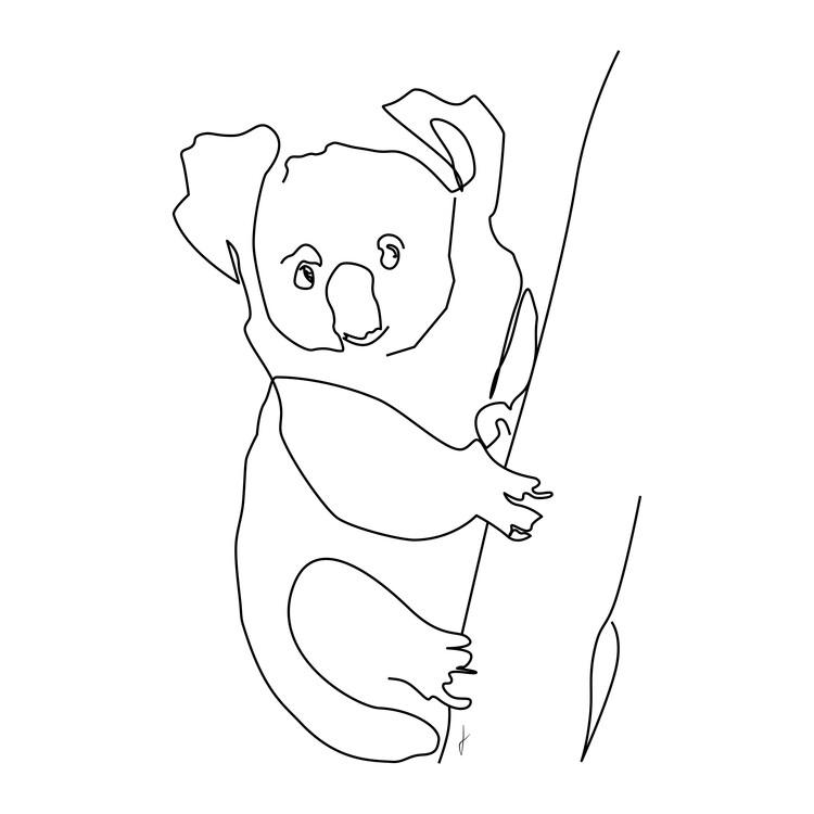Art Print on Demand Koala