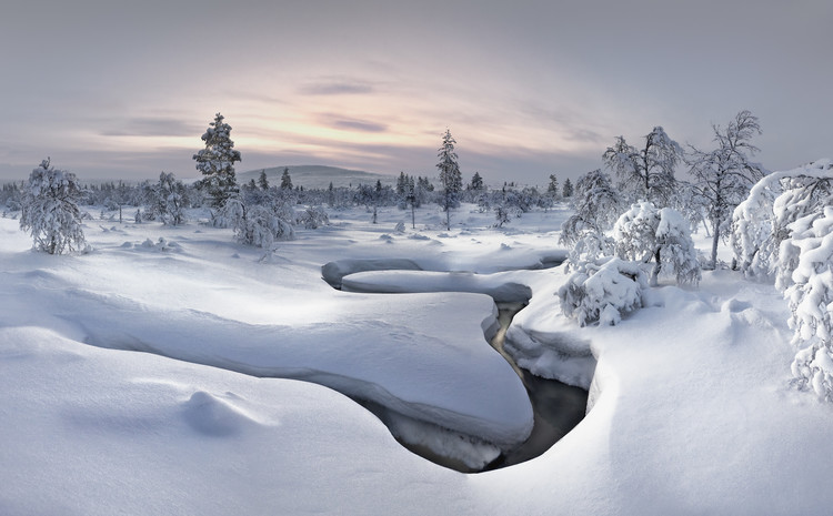 Art Print on Demand Lapland