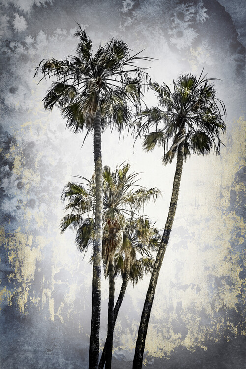 Art Print on Demand MODERN ART Lovely Palm Trees