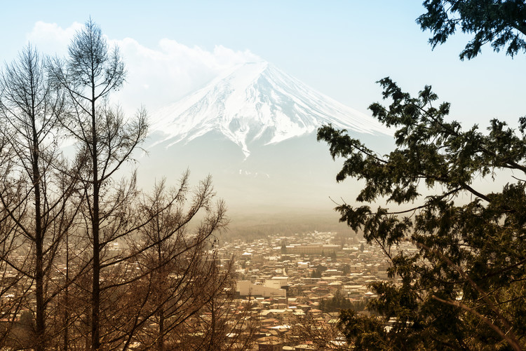 Art Print on Demand Mt. Fuji