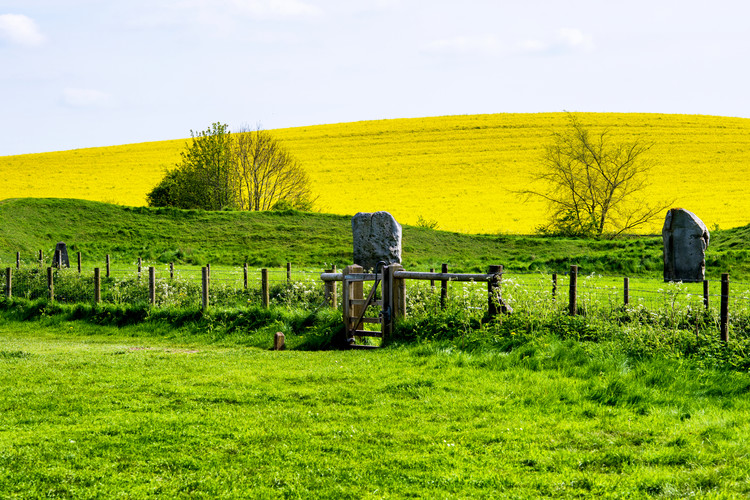 Art Print on Demand Natural Meadow Landscape and Abstract of Stones - Pewsey