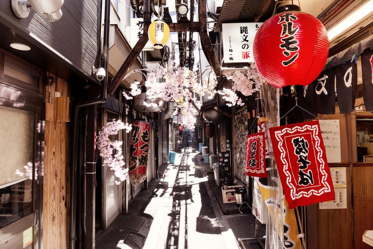 Art Print on Demand Omoide Yokocho Shinjuku II