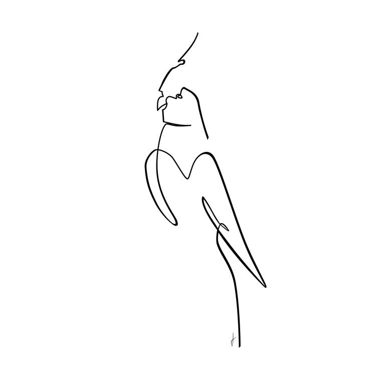 Art Print on Demand Papagalo