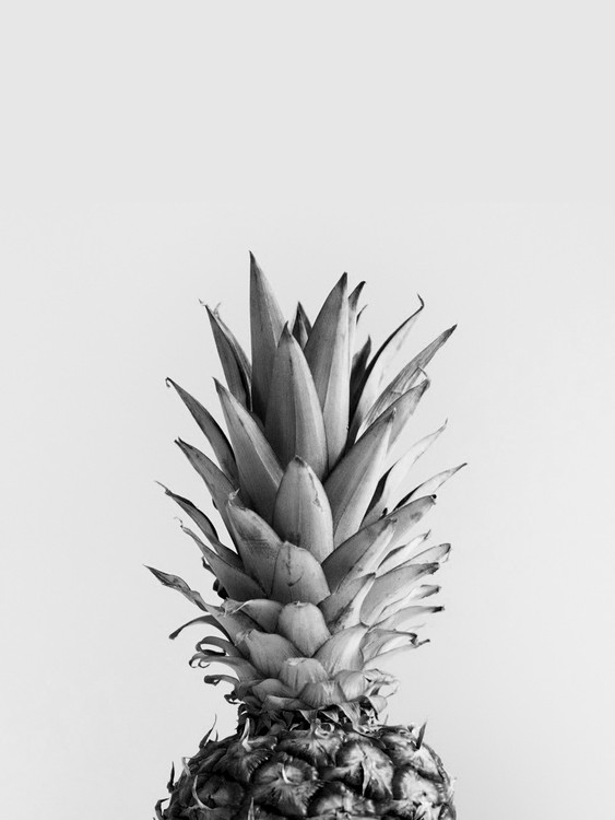 Art Print on Demand pineappleblackandwhite