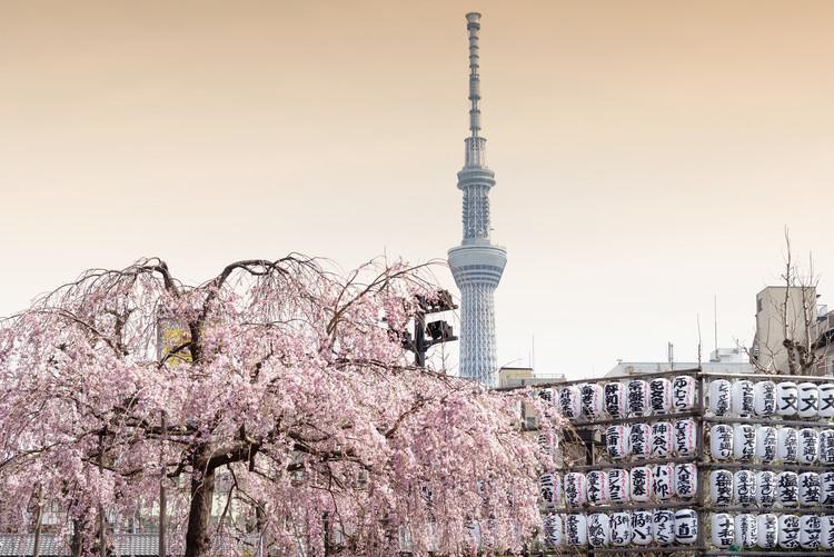 Art Print on Demand Sakura Tokyo Skytree