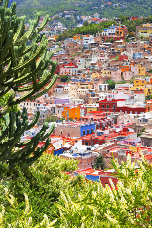 Art Print on Demand Summer to Guanajuato