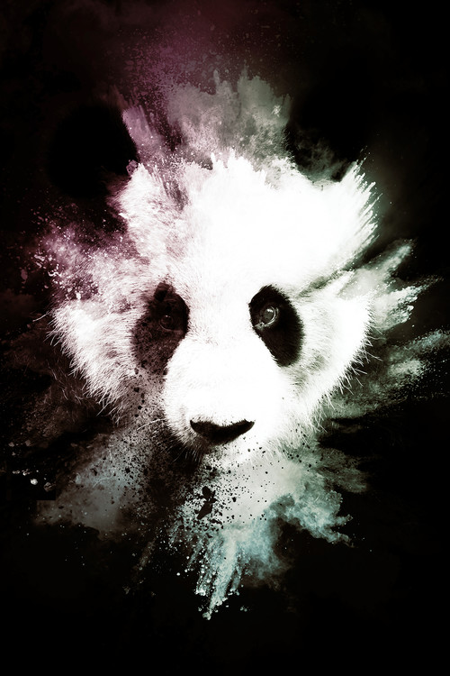 Art Print on Demand The Panda