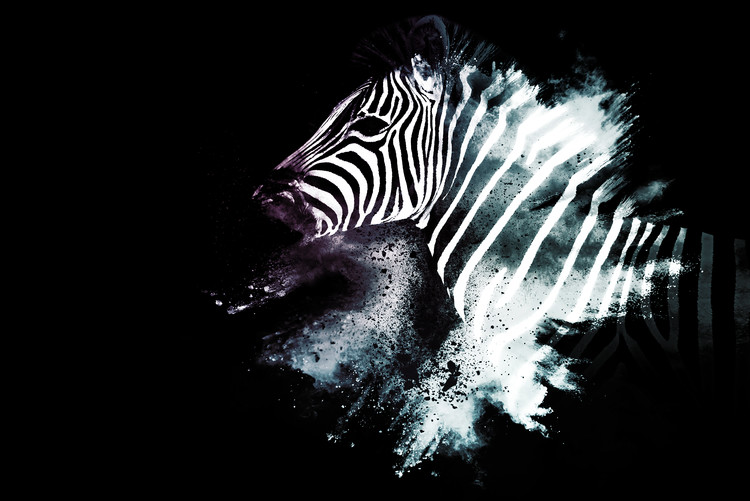 Art Print on Demand The Zebra