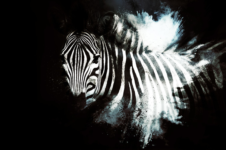 Art Print on Demand The Zebra II