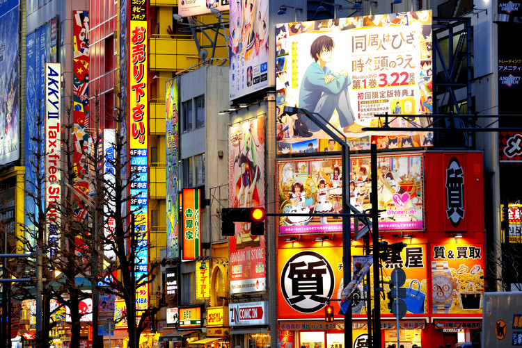 Art Print on Demand Tokyo Akihabara