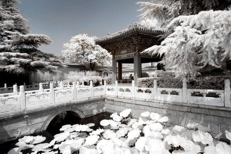 Art Print on Demand White Lotus Temple