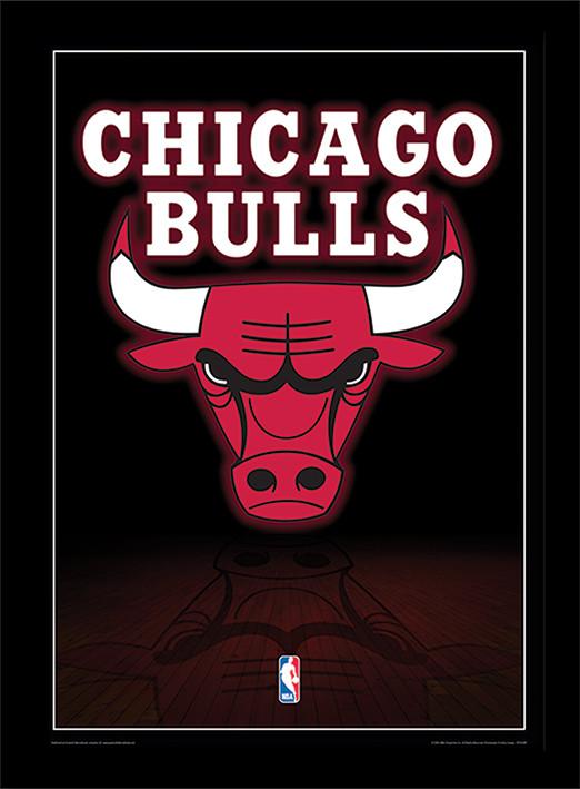 NBA - Chicago Bulls Logo Poster encadré en verre