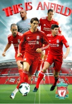 3D Poster  Liverpool - players 2010