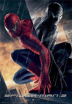 Spider Man 3 Reflection 3d 3d Poster 3d Print Europosters