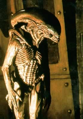 ALIEN 3 - picture of skeleton monster Poster