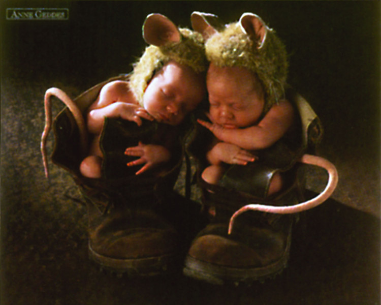 Pôster Anne Geddes - mice