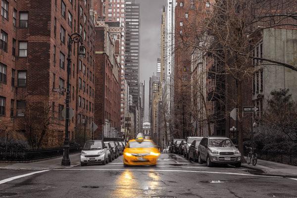 Assaf Frank - New York Taxi Poster