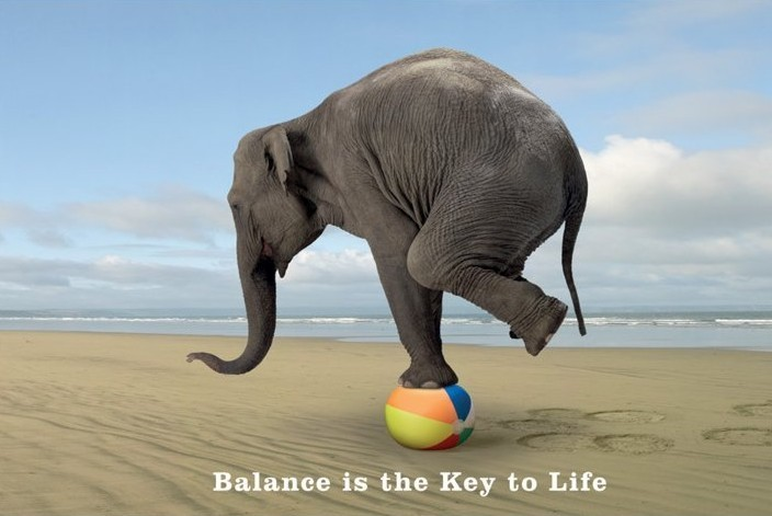 Balance is the key to life Poster