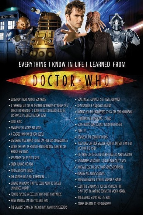 DOCTOR WHO - Everything I Know In Life Poster