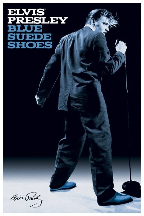 Artist Of Blue Suede Shoes