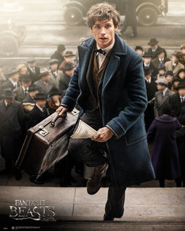 Fantastic Beasts and Where to Find Them - Newt Scamander Poster