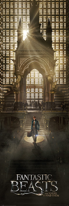 Poster Fantastic Beasts And Where To Find Them - Teaser