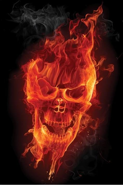 Flamig skull Poster