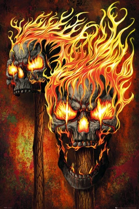 Flaming Skulls Poster Sold At Ukposters