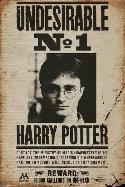 HARRY POTTER - undersirable n1 Poster