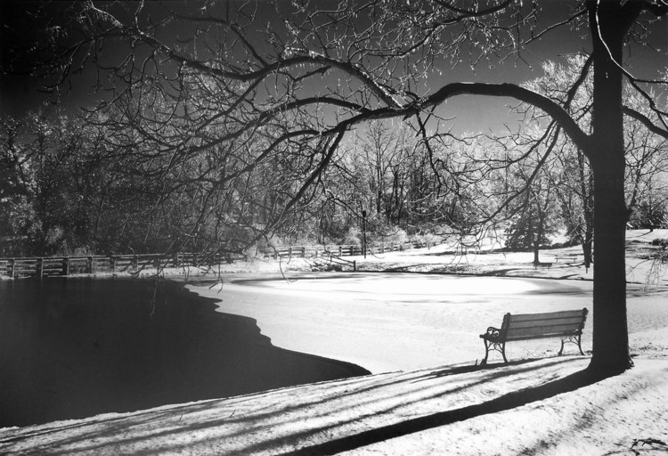 Heritage Pond in Winter Art Print