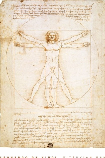 leondardo da vinci vitruvian man poster sold at. Black Bedroom Furniture Sets. Home Design Ideas