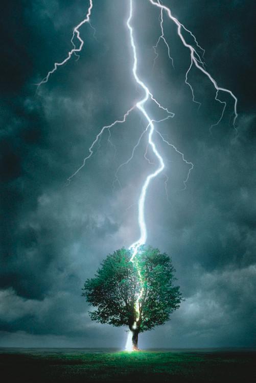 Lighting striking tree I Poster