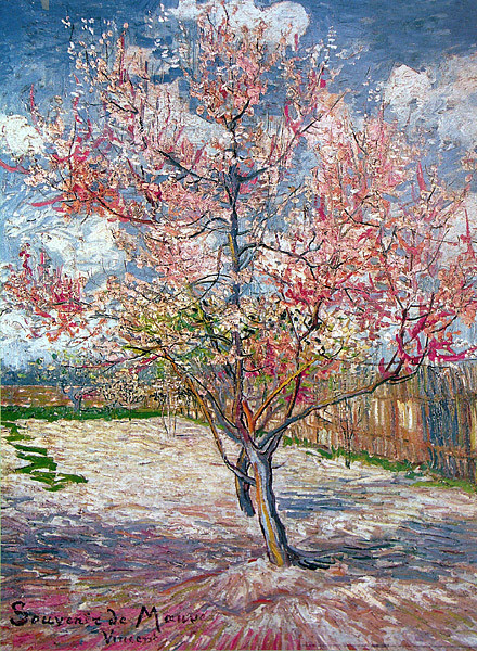 Peach Trees in Blossom - Vincent Van Gogh Poster   Sold at Abposters.com