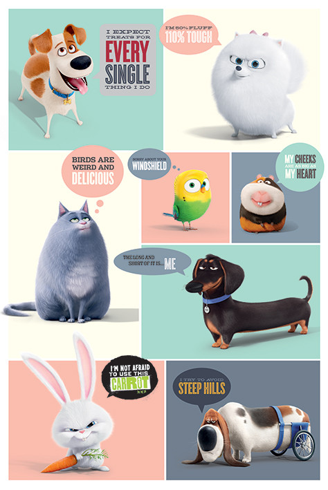 26dab297c Secret Life of Pets - Boxes Poster | Sold at Abposters.com