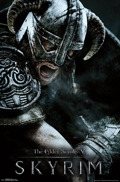 Skyrim The Elder Scrolls V - Aerial Poster