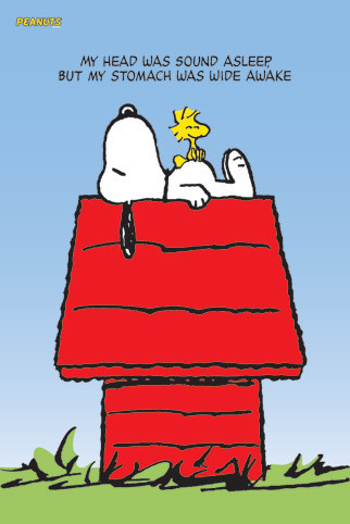 SNOOPY & WOODSTOCK Poster   Sold at Europosters