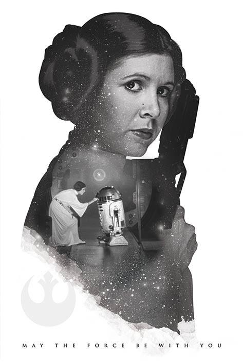 Star Wars Princess Leia Portrait Movie Poster Canvas Wall Art Film Print Sc-Fi