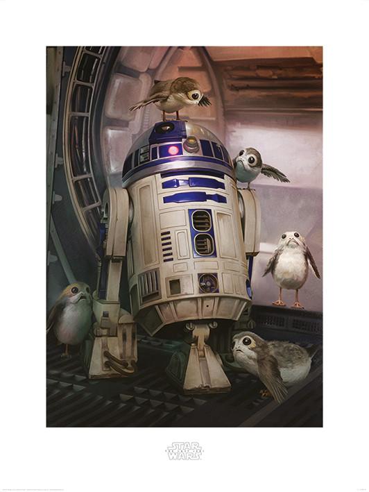 Star Wars The Last Jedi - R2-D2 & Porgs Art Print