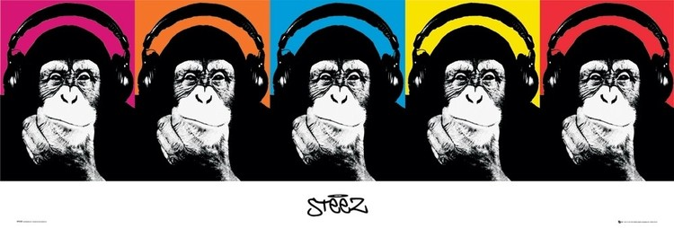 Steez - monkey Poster