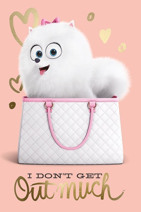 The Secret Life of Pets - I Don't Get Out Much Poster