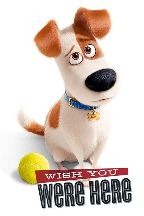 0ea7c02fe The Secret Life of Pets - Wish You Were Here Poster | Sold at ...
