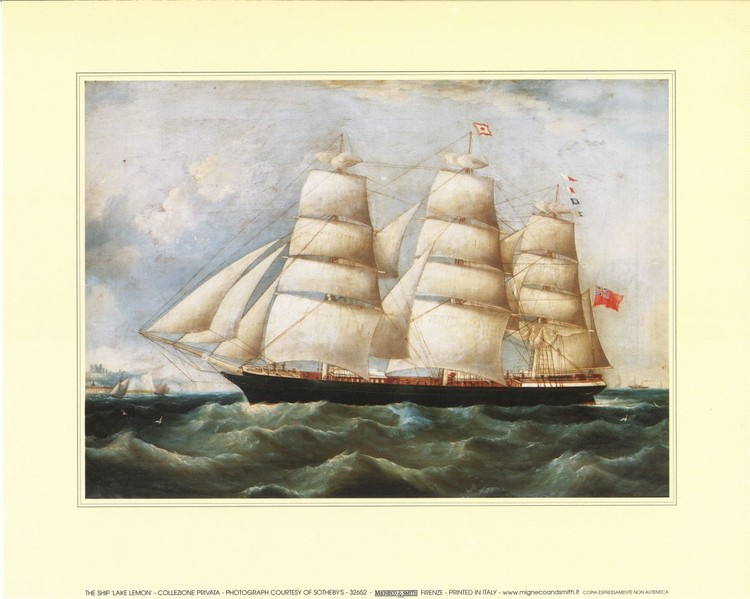 The Ship Lake Lemon Art Print