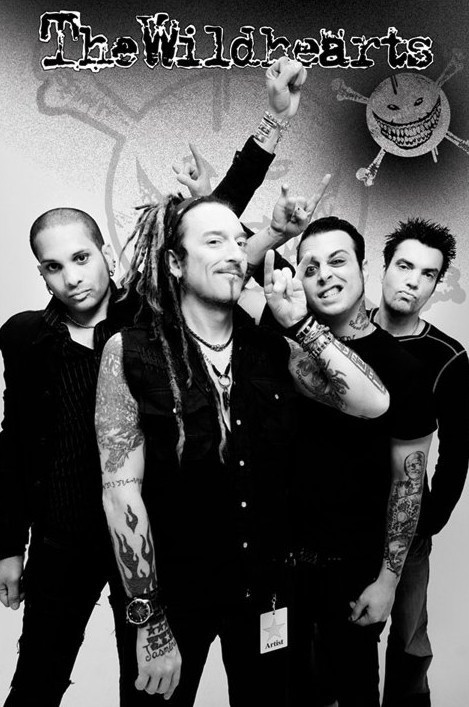 the Wildhearts - group Poster, Art Print