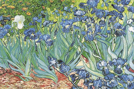 VINCENT VAN GOGH - les iris Poster | Sold at Abposters.com